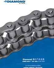Diamond Chain Global Product Guide Chinese
